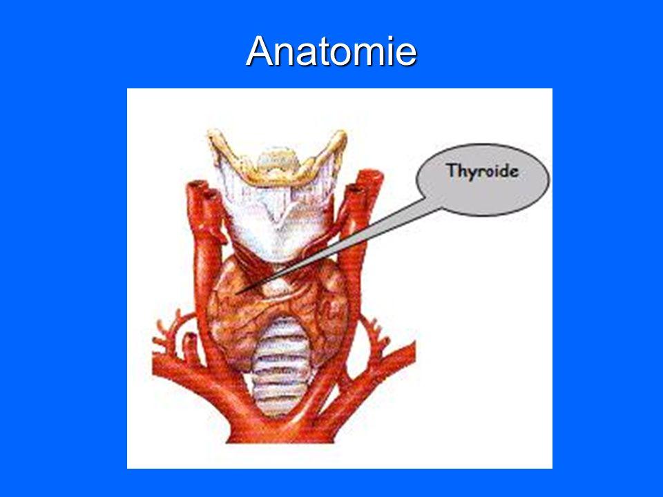 Hormonosynthèse Synthèse de T4>T3 = H.« active » Synthèse de T4>T3 = H.