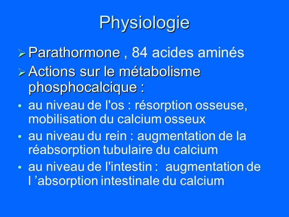 Physiologie Parathormone Parathormone, 84 acides aminés Actions sur le métabolisme phosphocalcique : Actions sur le métabolisme phosphocalcique : au n