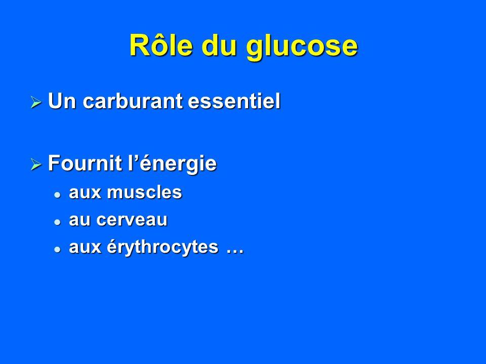 Rôle du glucose Un carburant essentiel Un carburant essentiel Fournit lénergie Fournit lénergie aux muscles aux muscles au cerveau au cerveau aux éryt