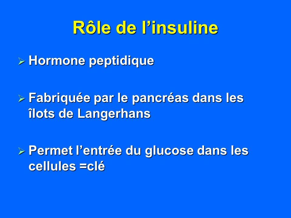 Rôle de linsuline Hormone peptidique Hormone peptidique Fabriquée par le pancréas dans les îlots de Langerhans Fabriquée par le pancréas dans les îlot