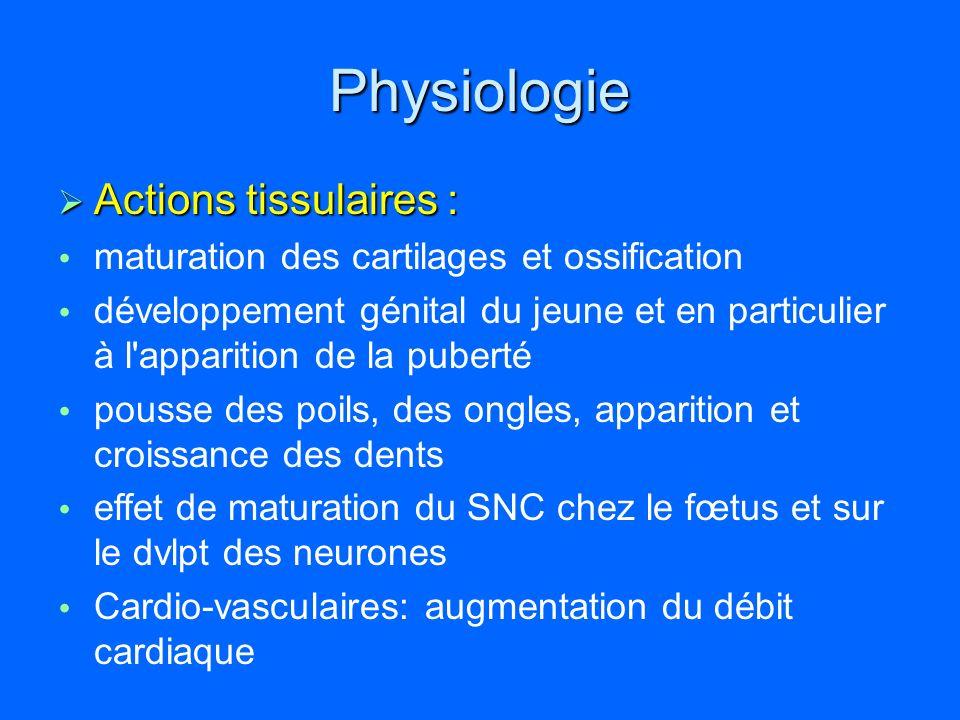 Pathologies parathyroïdiennes 2- Hypoparathyroïdie.
