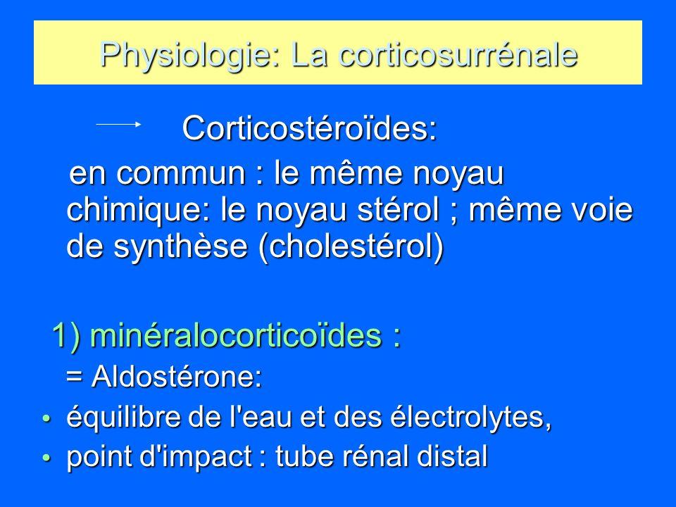 Physiologie: La corticosurrénale Corticostéroïdes: Corticostéroïdes: en commun : le même noyau chimique: le noyau stérol ; même voie de synthèse (chol