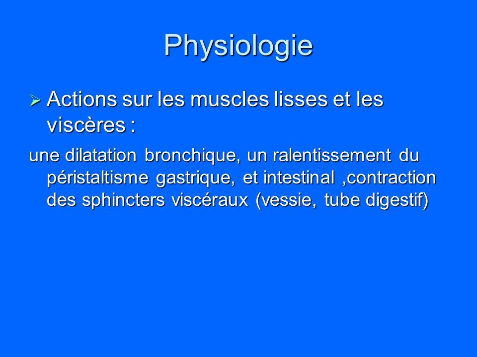 Physiologie Actions sur les muscles lisses et les viscères : Actions sur les muscles lisses et les viscères : une dilatation bronchique, un ralentisse
