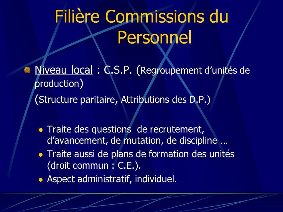 Filière Commissions du Personnel Niveau local : C.S.P. ( Regroupement dunités de production ) ( Structure paritaire, Attributions des D.P.) Traite des