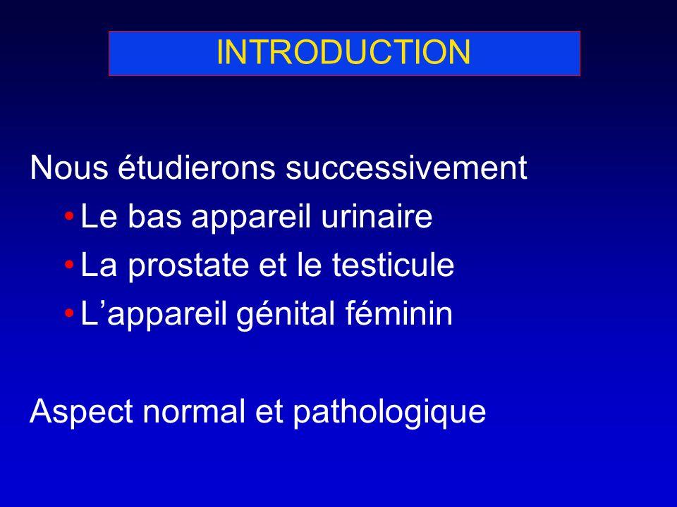 INTRODUCTION Nous étudierons successivement Le bas appareil urinaire La prostate et le testicule Lappareil génital féminin Aspect normal et pathologiq