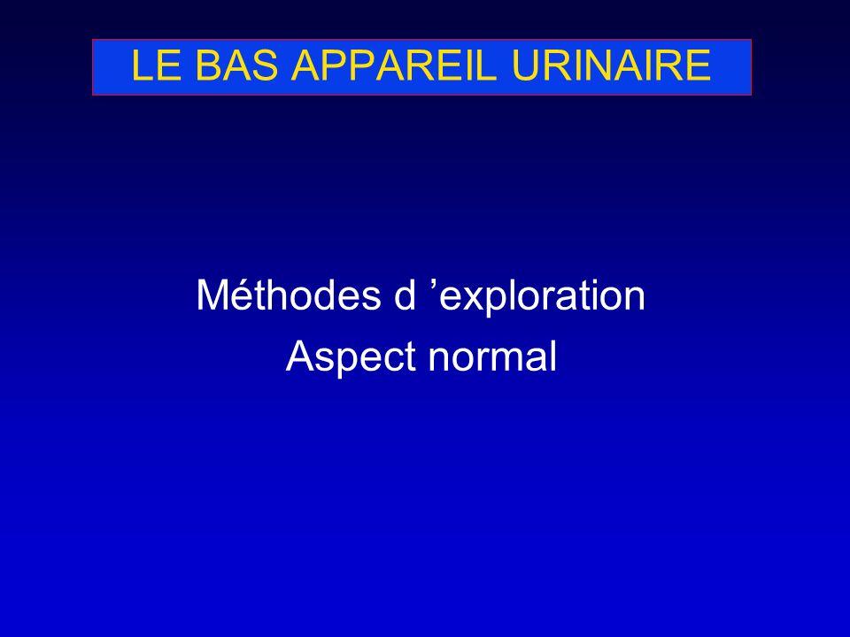 LE BAS APPAREIL URINAIRE: ÉCHOGRAPHIE Examen de première intention Vessie pleine ++ Paroi fine et régulière (< 3 mm) Contenu anéchogène Visualisation de méats urétéraux Mesure du résidu post-mictionnel