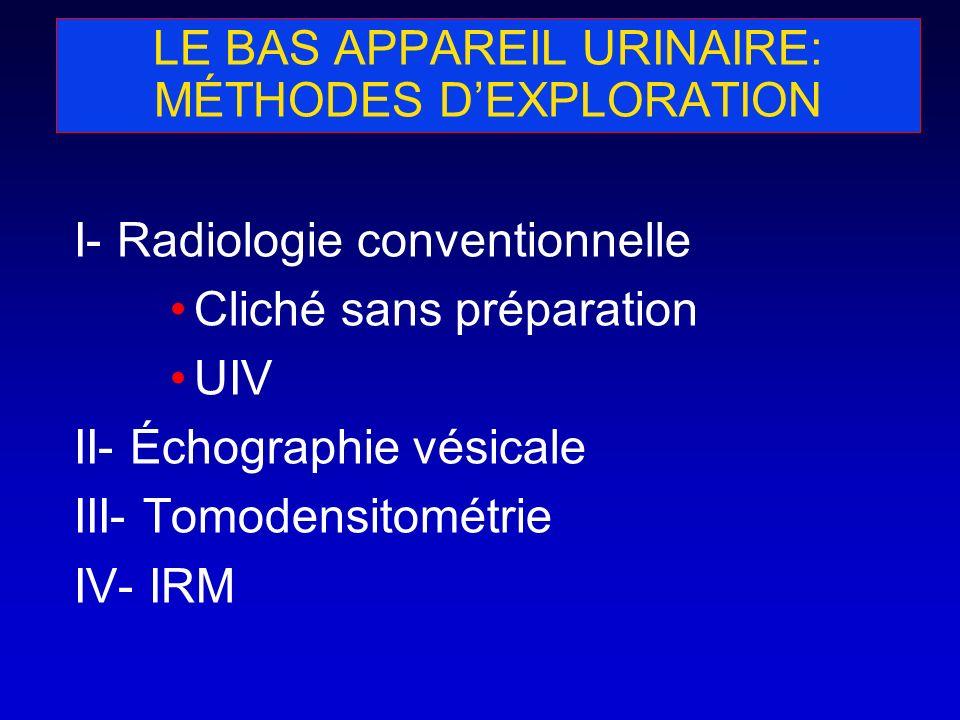 LE BAS APPAREIL URINAIRE: MÉTHODES DEXPLORATION I- Radiologie conventionnelle Cliché sans préparation UIV II- Échographie vésicale III- Tomodensitomét