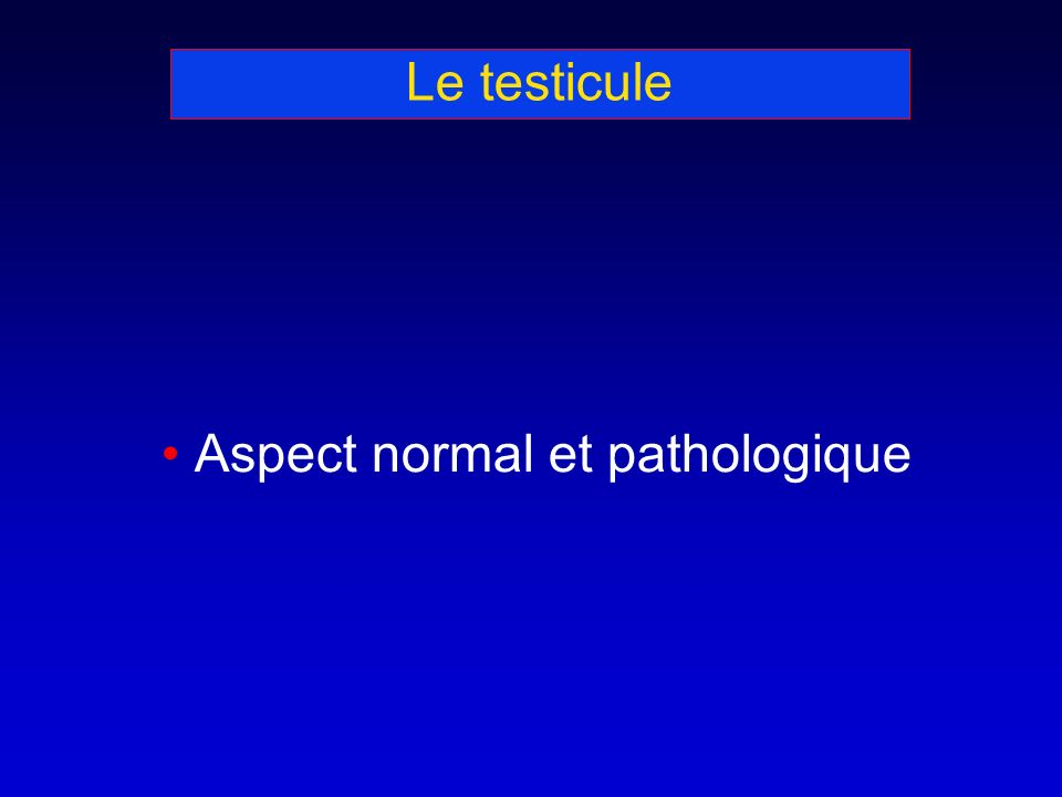 Le testicule Aspect normal et pathologique