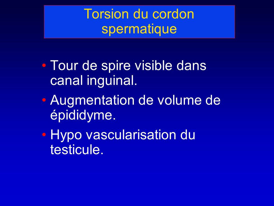 Torsion du cordon spermatique Tour de spire visible dans canal inguinal.