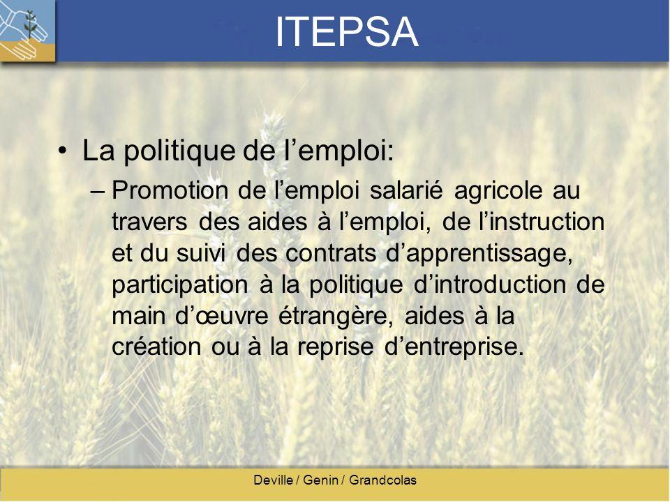 Deville / Genin / Grandcolas ITEPSA La politique de lemploi: –Promotion de lemploi salarié agricole au travers des aides à lemploi, de linstruction et