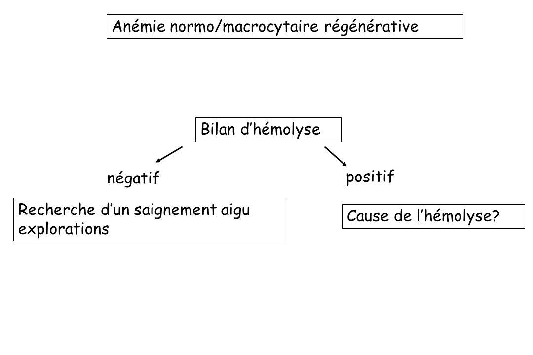 Anémie normo/macrocytaire régénérative Bilan dhémolyse négatif Recherche dun saignement aigu explorations positif Cause de lhémolyse?