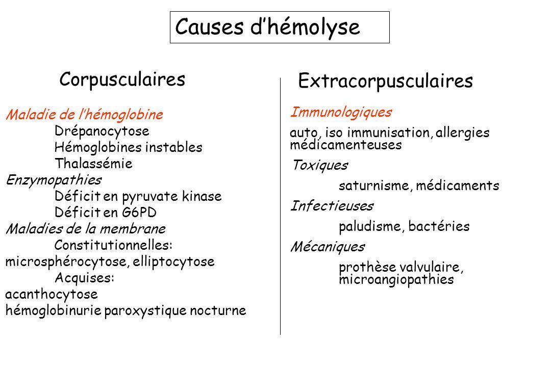 Causes dhémolyse Corpusculaires Extracorpusculaires Maladie de lhémoglobine Drépanocytose Hémoglobines instables Thalassémie Enzymopathies Déficit en