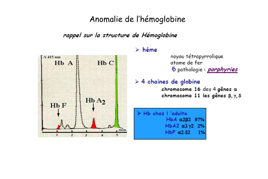 Anomalie de lhémoglobine