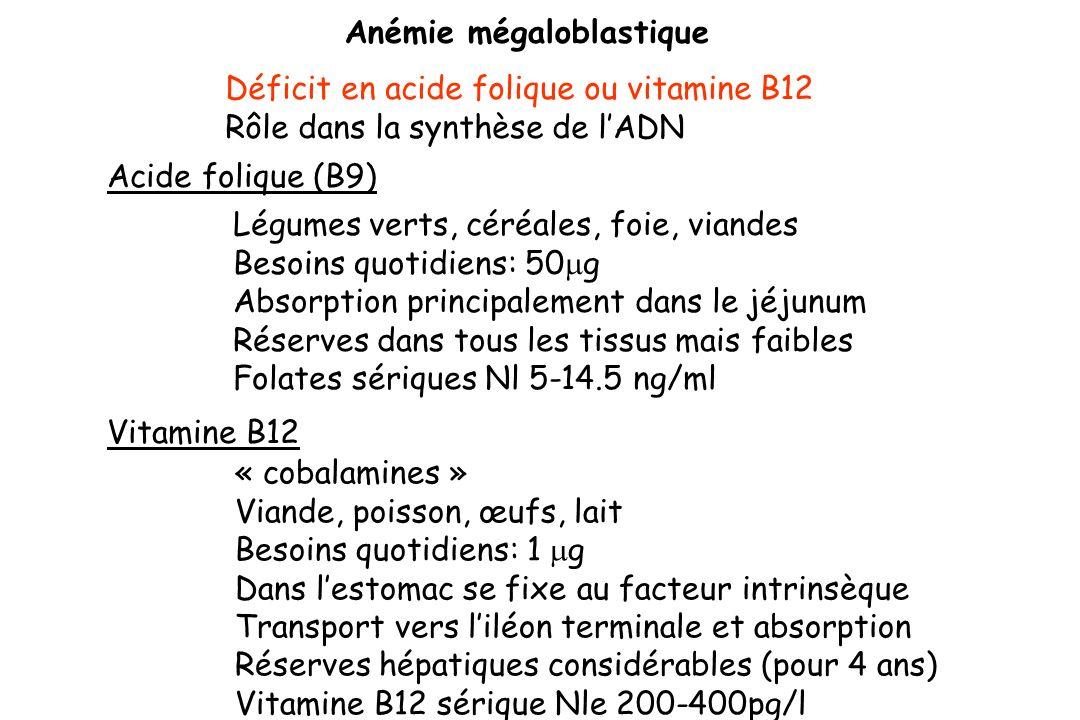 Anémie mégaloblastique Déficit en acide folique ou vitamine B12 Rôle dans la synthèse de lADN Acide folique (B9) Légumes verts, céréales, foie, viande