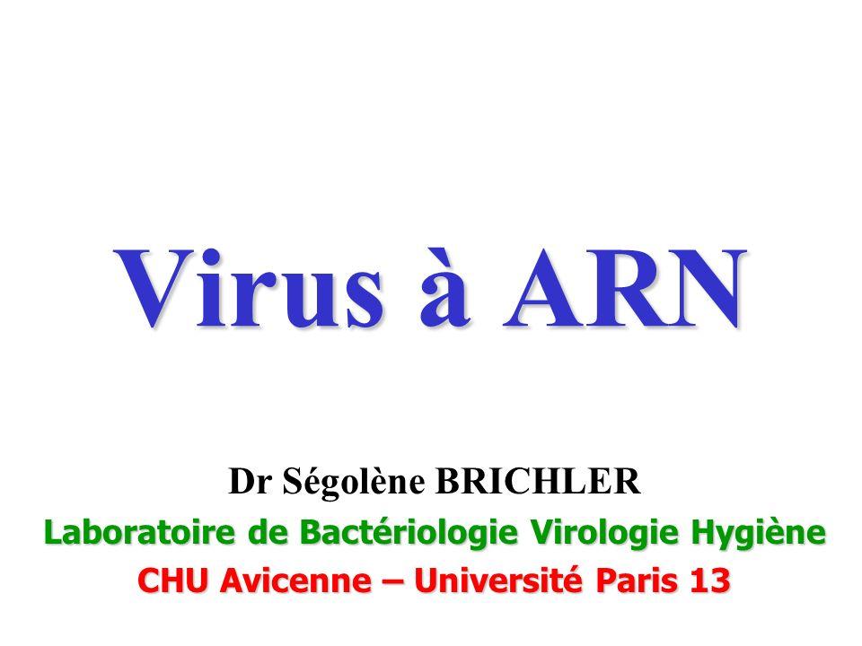 Virus à ARN Dr Ségolène BRICHLER Laboratoire de Bactériologie Virologie Hygiène CHU Avicenne – Université Paris 13
