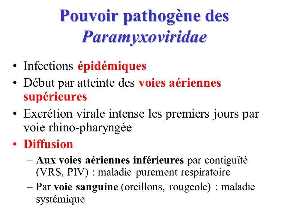 Pouvoir pathogène des Paramyxoviridae Infections épidémiques Début par atteinte des voies aériennes supérieures Excrétion virale intense les premiers