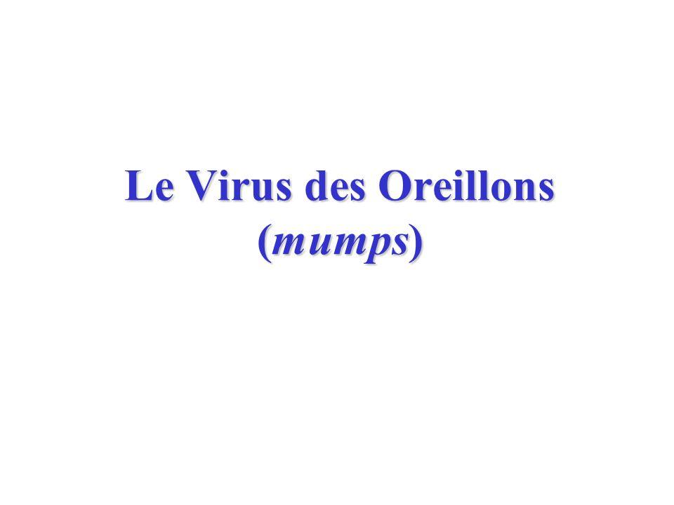 Le Virus des Oreillons (mumps)