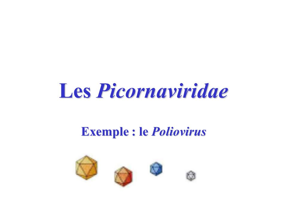 Les Picornaviridae Exemple : le Poliovirus
