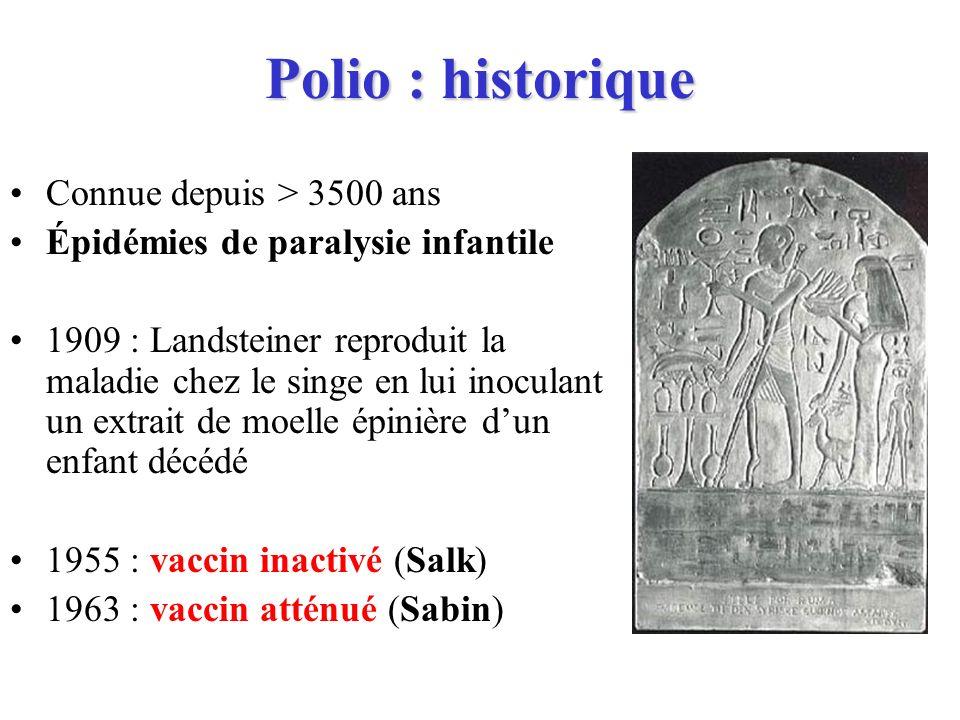 Polio : historique Connue depuis > 3500 ans Épidémies de paralysie infantile 1909 : Landsteiner reproduit la maladie chez le singe en lui inoculant un