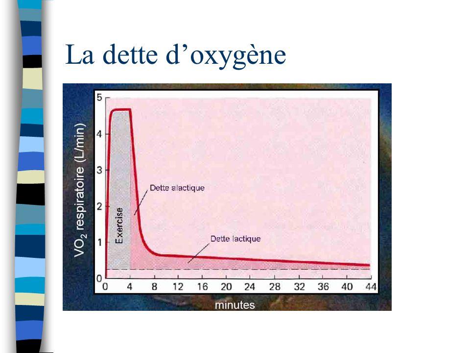 La dette doxygène