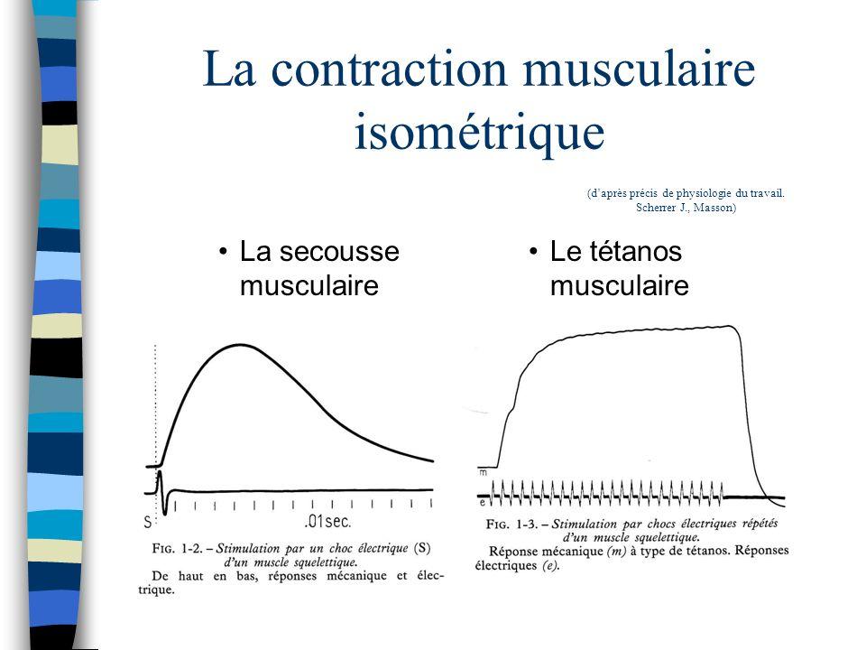 La contraction musculaire isométrique La secousse musculaire Le tétanos musculaire (daprès précis de physiologie du travail. Scherrer J., Masson)