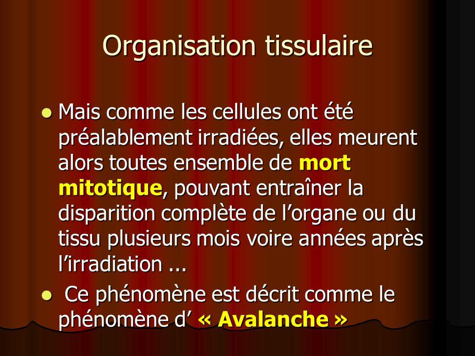 Organisation tissulaire Mais comme les cellules ont été préalablement irradiées, elles meurent alors toutes ensemble de mort mitotique, pouvant entraî