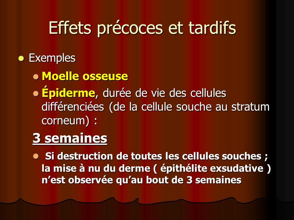 Effets précoces et tardifs Exemples Exemples Moelle osseuse Moelle osseuse Épiderme, durée de vie des cellules différenciées (de la cellule souche au