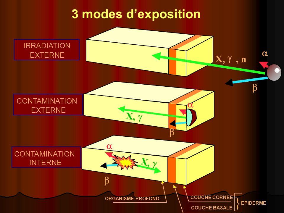 ORGANISME PROFOND COUCHE CORNEE COUCHE BASALE EPIDERME } X,, n, n X, X, IRRADIATION EXTERNE CONTAMINATION EXTERNE CONTAMINATION INTERNE 3 modes dexpos