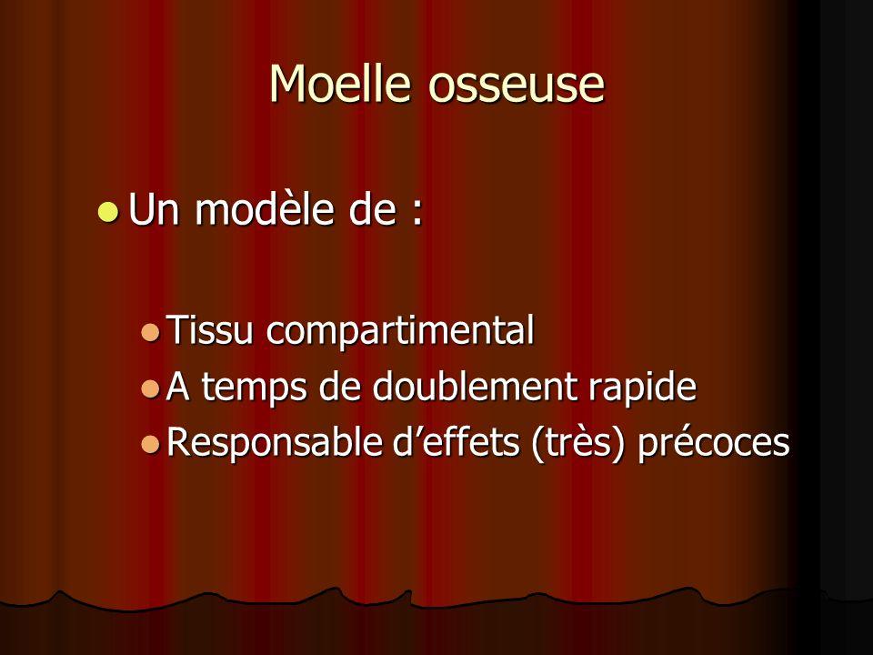 Moelle osseuse Un modèle de : Un modèle de : Tissu compartimental Tissu compartimental A temps de doublement rapide A temps de doublement rapide Respo