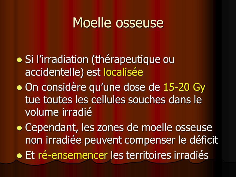 Moelle osseuse Si lirradiation (thérapeutique ou accidentelle) est localisée Si lirradiation (thérapeutique ou accidentelle) est localisée On considèr
