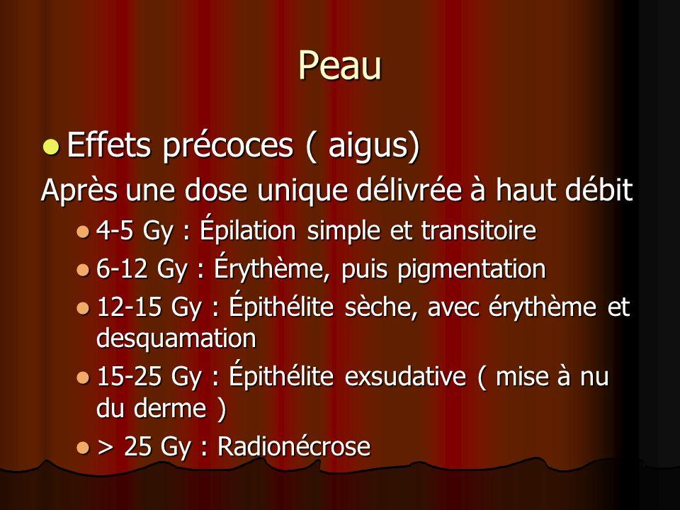 Peau Effets précoces ( aigus) Effets précoces ( aigus) Après une dose unique délivrée à haut débit 4-5 Gy : Épilation simple et transitoire 4-5 Gy : É