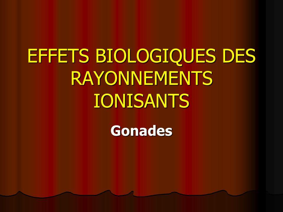 EFFETS BIOLOGIQUES DES RAYONNEMENTS IONISANTS Gonades