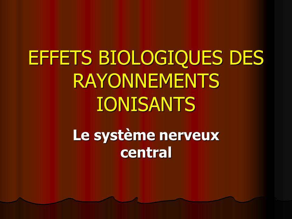 EFFETS BIOLOGIQUES DES RAYONNEMENTS IONISANTS Le système nerveux central