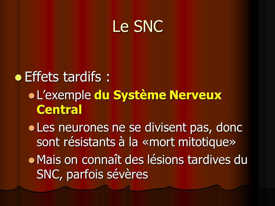 Le SNC Effets tardifs : Effets tardifs : Lexemple du Système Nerveux Central Lexemple du Système Nerveux Central Les neurones ne se divisent pas, donc