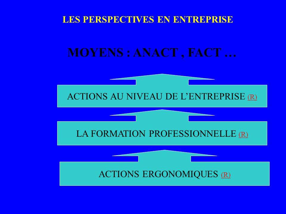 LES PERSPECTIVES EN ENTREPRISE PERS PECTI VES_ 2 MOYENS : ANACT, FACT … ACTIONS AU NIVEAU DE LENTREPRISE (R) (R) LA FORMATION PROFESSIONNELLE (R) (R) ACTIONS ERGONOMIQUES (R) (R)