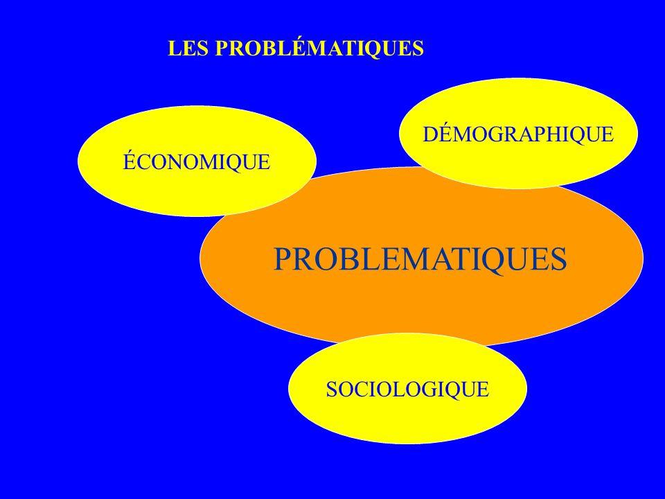 PROBLEMATIQUES ÉCONOMIQUE SOCIOLOGIQUE DÉMOGRAPHIQUE LES PROBLE MATIQU ES LES PROBLÉMATIQUES