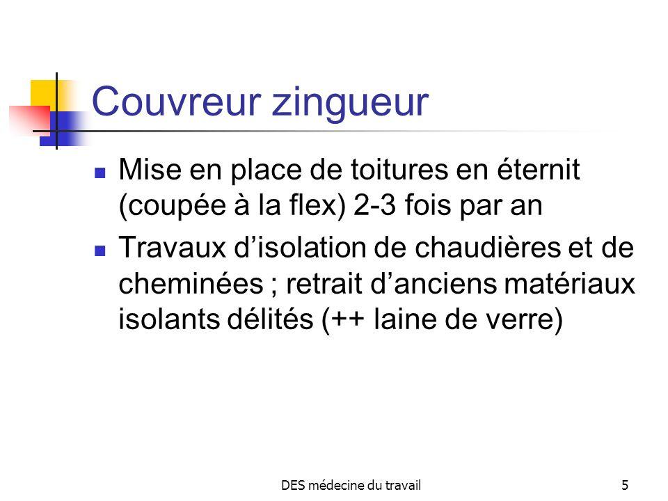 DES médecine du travail5 Couvreur zingueur Mise en place de toitures en éternit (coupée à la flex) 2-3 fois par an Travaux disolation de chaudières et