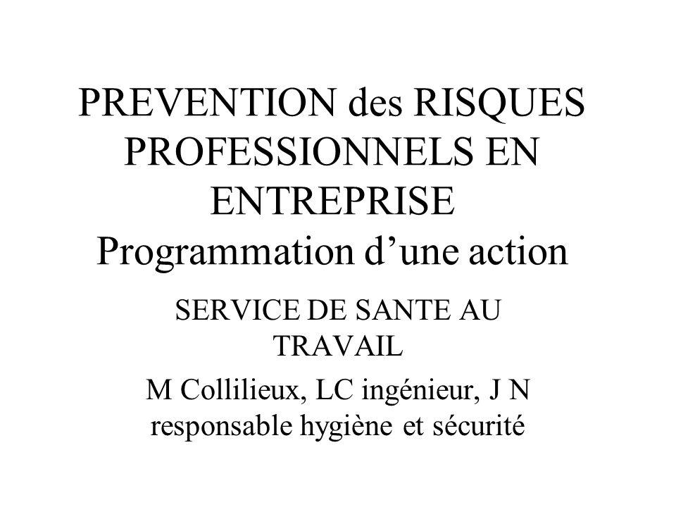 PREVENTION des RISQUES PROFESSIONNELS EN ENTREPRISE Programmation dune action SERVICE DE SANTE AU TRAVAIL M Collilieux, LC ingénieur, J N responsable
