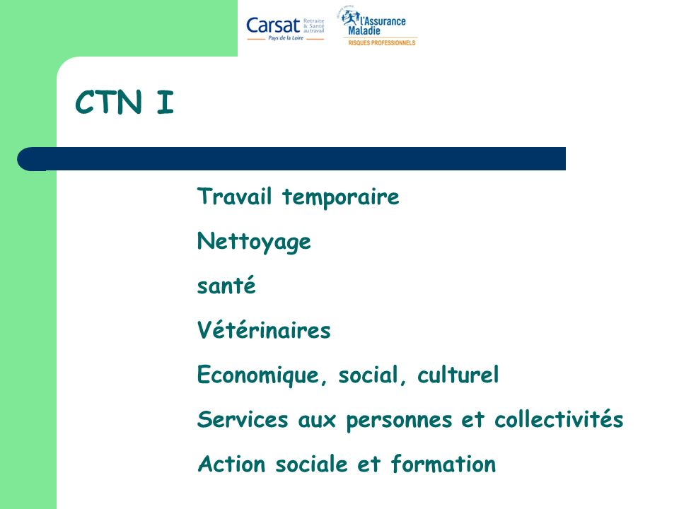 CTN I Travail temporaire Nettoyage santé Vétérinaires Economique, social, culturel Services aux personnes et collectivités Action sociale et formation