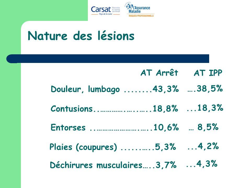 Nature des lésions Douleur, lumbago........43,3% Contusions..………….…..…..18,8% Entorses..………………….…..10,6% Déchirures musculaires…..3,7% Plaies (coupures)......…..5,3% AT Arrêt AT IPP ….38,5%...18,3% … 8,5%...4,2%...4,3%