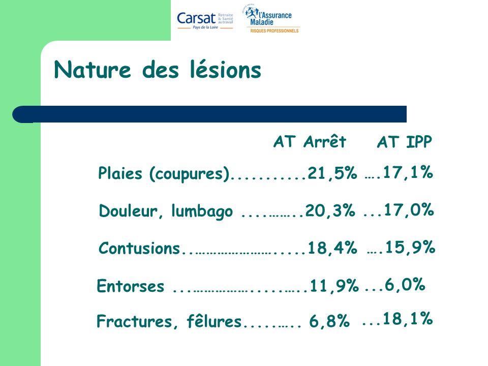 Nature des lésions Plaies (coupures)...........21,5% Douleur, lumbago....……..20,3% Contusions..………………….....18,4% Fractures, fêlures.....….. 6,8% Entor