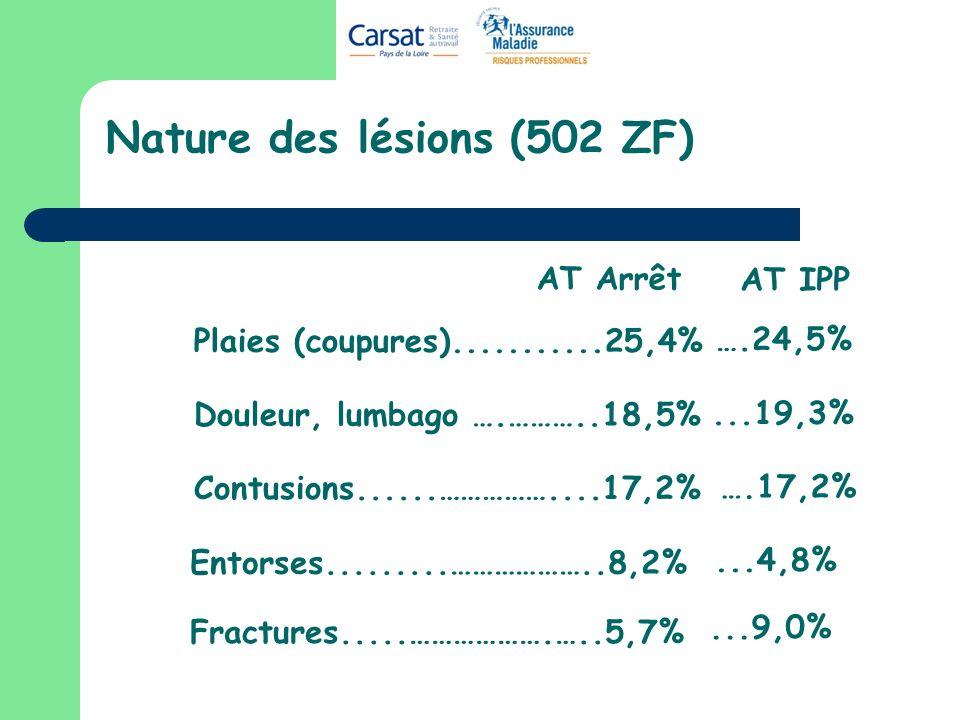 Nature des lésions (502 ZF) Plaies (coupures)...........25,4% Douleur, lumbago ….………..18,5% Contusions......……………....17,2% Fractures.....……………….…..5,7