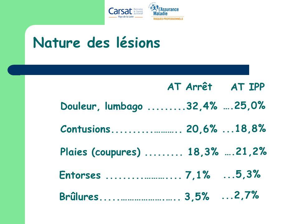 Nature des lésions Douleur, lumbago.........32,4% Contusions..........……….. 20,6% Plaies (coupures)......... 18,3% Brûlures.....……………….….. 3,5% Entors