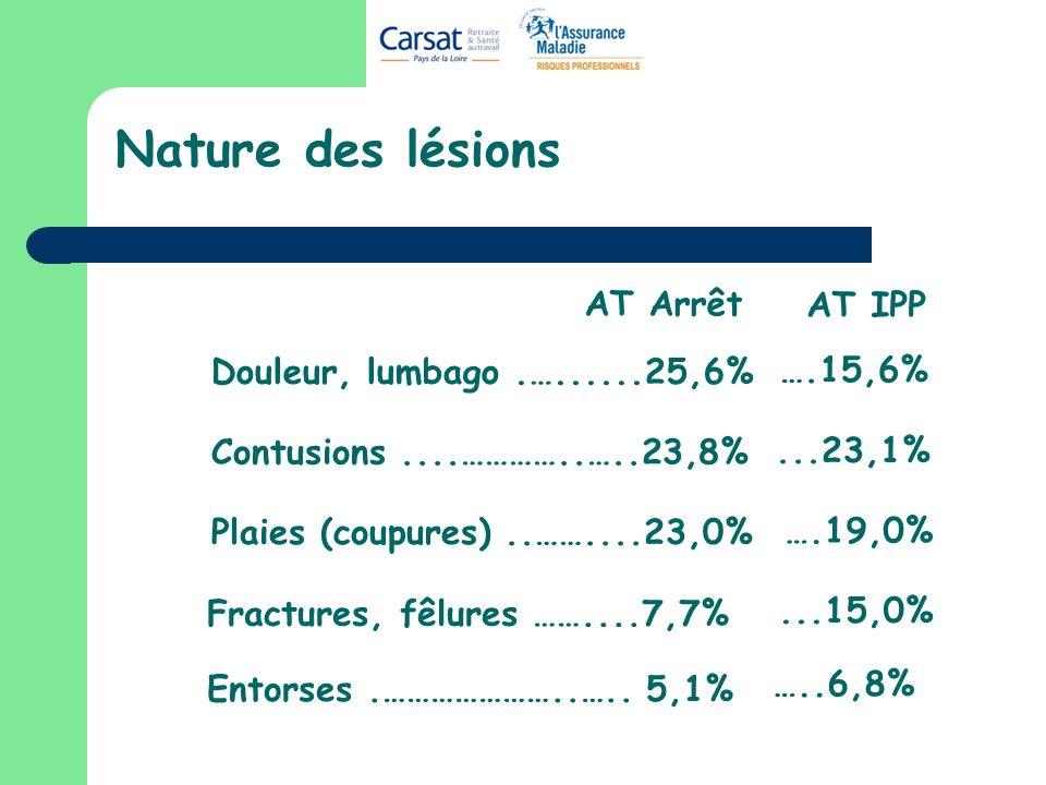 Nature des lésions Douleur, lumbago.…......25,6% Contusions....…………..…..23,8% Plaies (coupures)..……....23,0% Entorses.…………………..….. 5,1% Fractures, fêl
