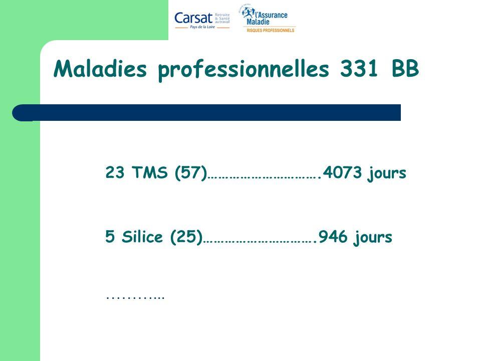 Maladies professionnelles 331 BB 23 TMS (57)………………………….4073 jours 5 Silice (25)………………………….946 jours ………...