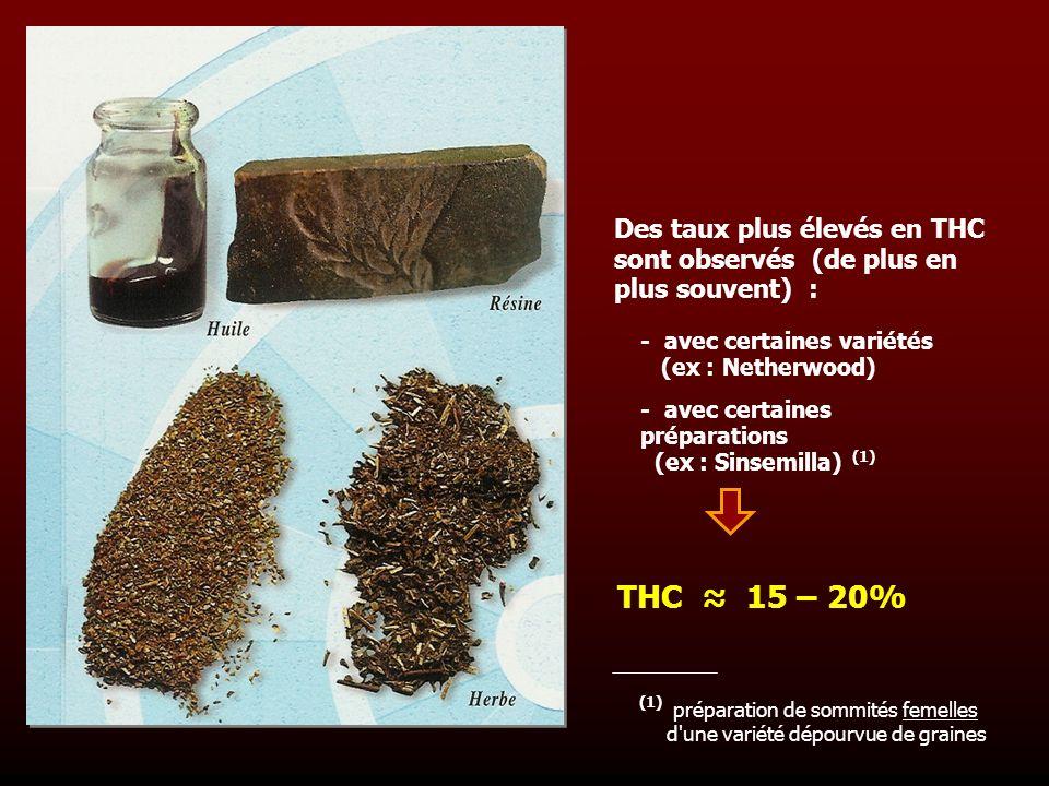 Des taux plus élevés en THC sont observés (de plus en plus souvent) : - avec certaines variétés (ex : Netherwood) - avec certaines préparations (ex :