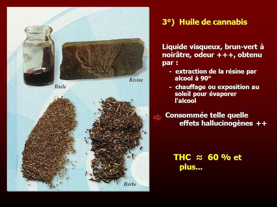 Liquide visqueux, brun-vert à noirâtre, odeur +++, obtenu par : 3°) Huile de cannabis - extraction de la résine par alcool à 90° - chauffage ou exposi