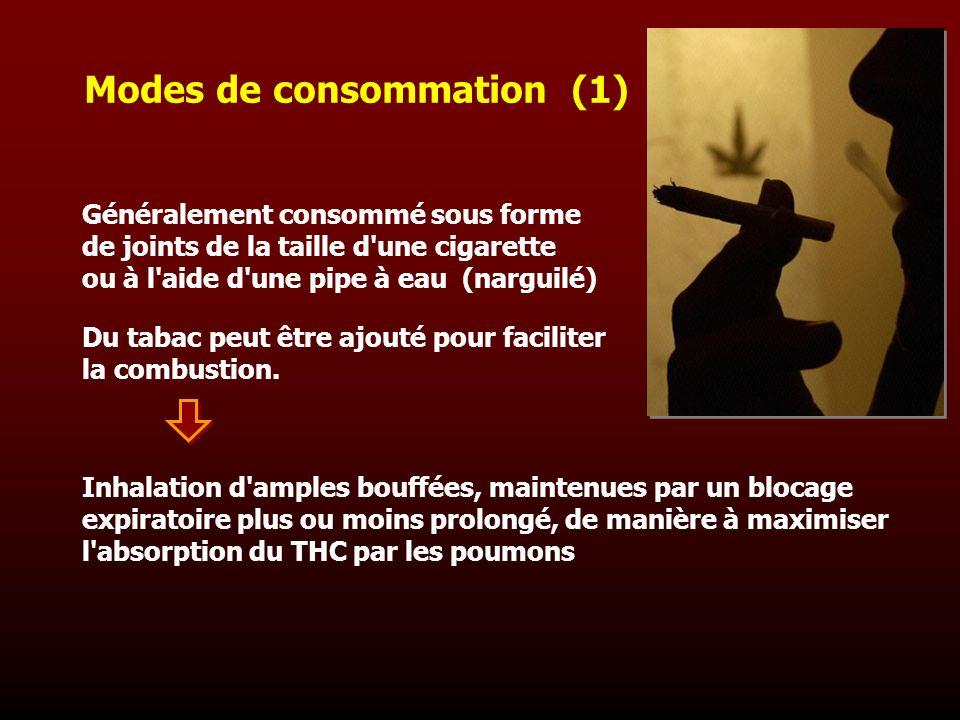 Modes de consommation (1) Généralement consommé sous forme de joints de la taille d'une cigarette ou à l'aide d'une pipe à eau (narguilé) Du tabac peu