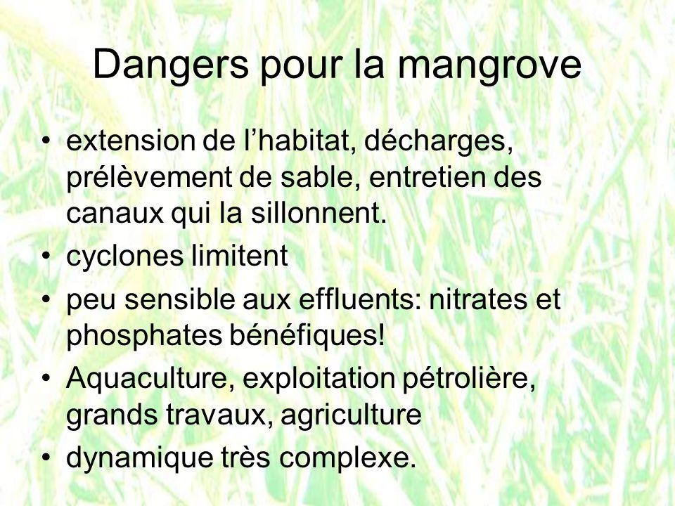 Dangers pour la mangrove extension de lhabitat, décharges, prélèvement de sable, entretien des canaux qui la sillonnent. cyclones limitent peu sensibl