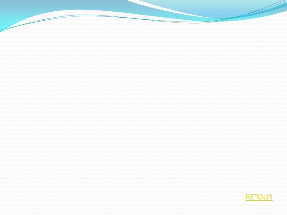 RETOUR CYCLE 3 Création TICES Utilisation de logiciels de créations Courrier électronique Recherche documentaire Bases documentaires Didacticiels exerciseurs (pour postes isolés) Exemples Maths Anglais Français